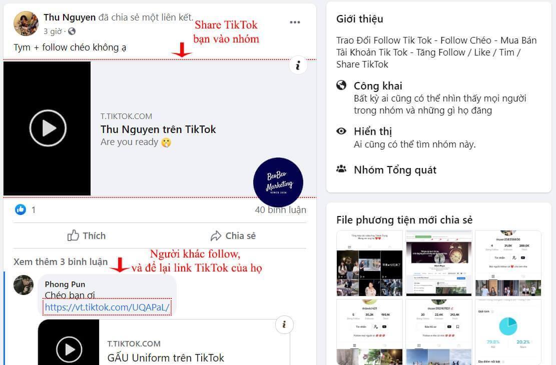 Chia sẻ video Tiktok của bạn trên những nhóm facebook này