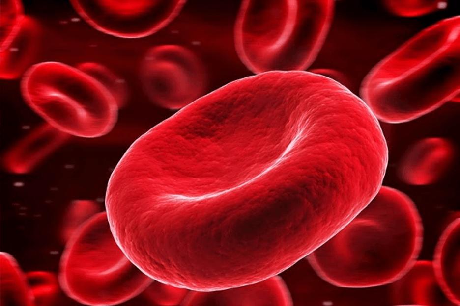 Ghế mát xa giúp lưu lượng máu phát triển