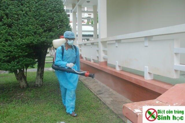 Dịch vụ phun diệt muỗi tại nhà Hà Nội uy tín – giá rẻ