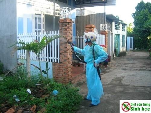 Dịch vụ phun thuốc diệt muỗi tại Hà Nội của chúng tô là tốt nhất hiện nay