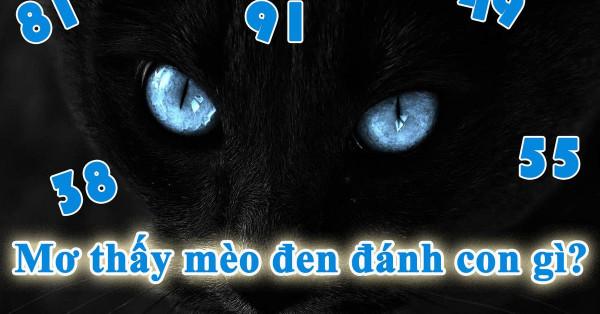 Nằm mơ thấy con mèo đen đánh số mấy