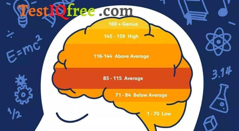 Các bài kiểm tra IQ có thực sự đo lường trí thông minh không?